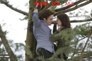 crepusculo-3